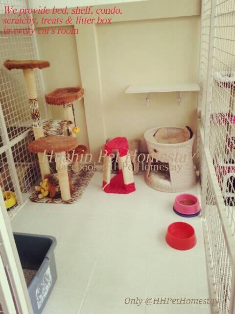 Huahin Pet Homestay (หัวหินเพ็ทโฮมสเตย์) ห้องพักส่วนตัวสำหรับสุนัขและแมว