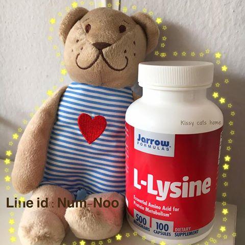 ขนาดทดลอง ไลซีน (Lysine) เพียว 100% แบบผง