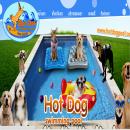 Hot Dog Pool สระว่ายน้ำสำหรับน้องหมา รับฝากสุนัข นอนห้องแอร์
