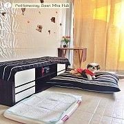 (Nonthaburi) Pet Homestay Baan Mha Hub