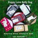 ผ้าคาดเอวสุนัขชาย  แบบมีแถบซับในตัว ใช้ซ้ำได้300 ครั้ง ราคาเริ่ม 400  ฿ ไลน์ 0616919192