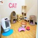 [รัตนาธิเบศร์] โรงแรมแมว Pao Cat Hotel ฝากแมวนนทบุรี ฝากเลี้ยงแมวรัตนาธิเบศร์ TEL 085-8959156