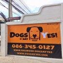 รับฝากเลี้ยงสุนัข สุขุมวิท 31 รายวัน รายเดือน ไปกลับ ไม่ขังกรง